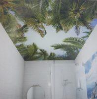 Пальмы интерьер