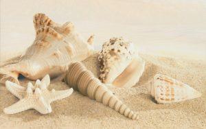 Amalfi sand decor 01 250х400 мм