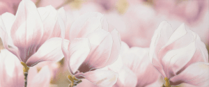 Rapsodia violet decor 01 250*600 мм